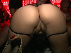 Orgy In The Vip Style^beeg